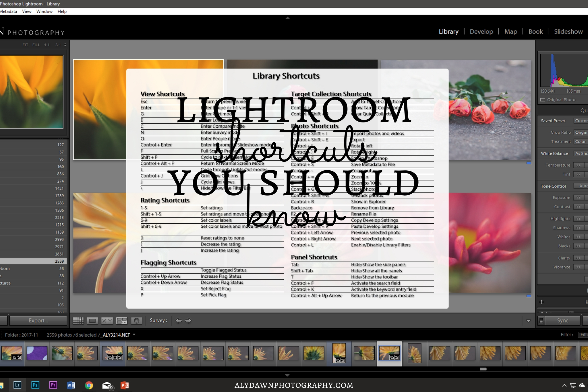 Lightroom Shortcuts You Should Know