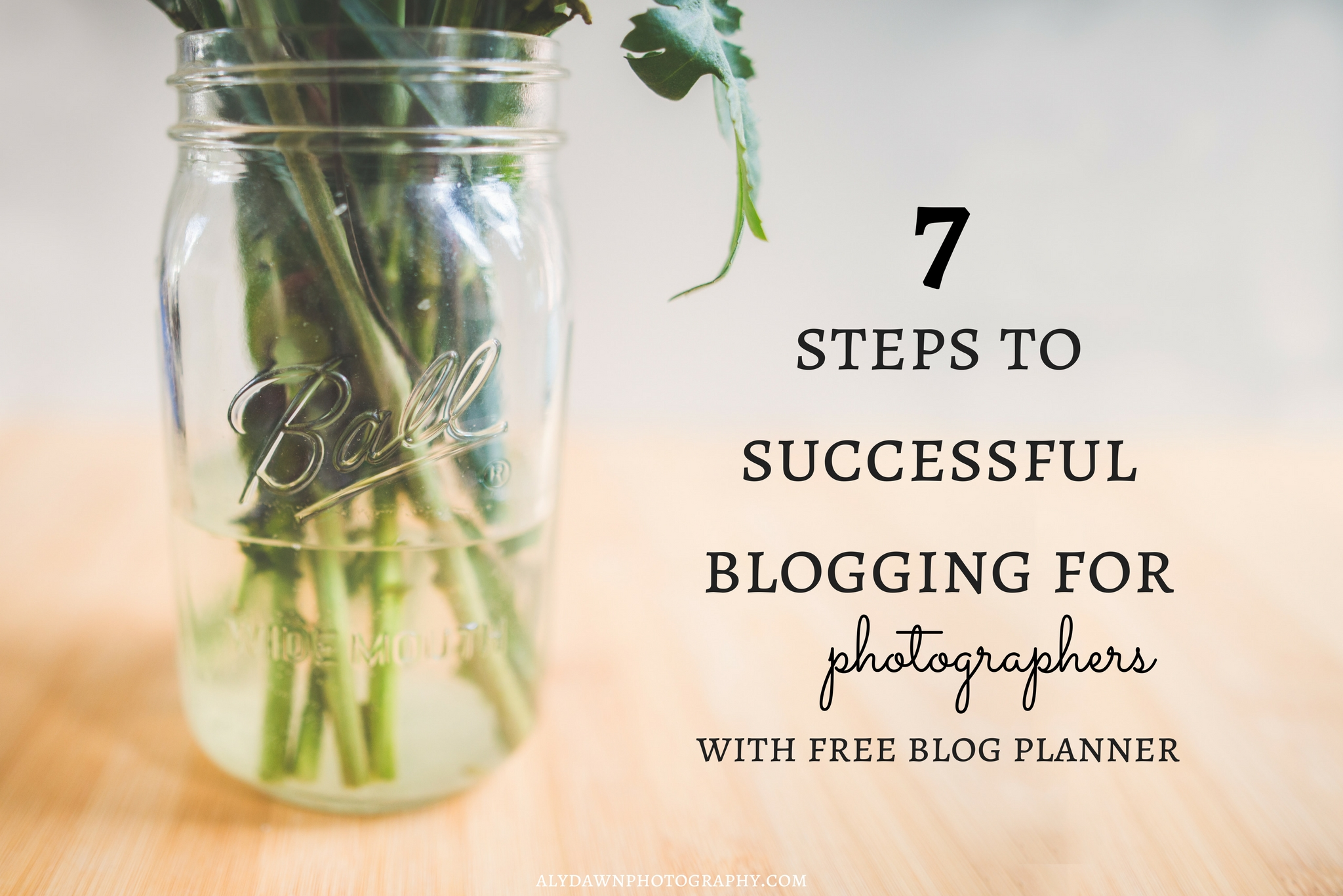 7 Steps to Successful Blogging for Photographers