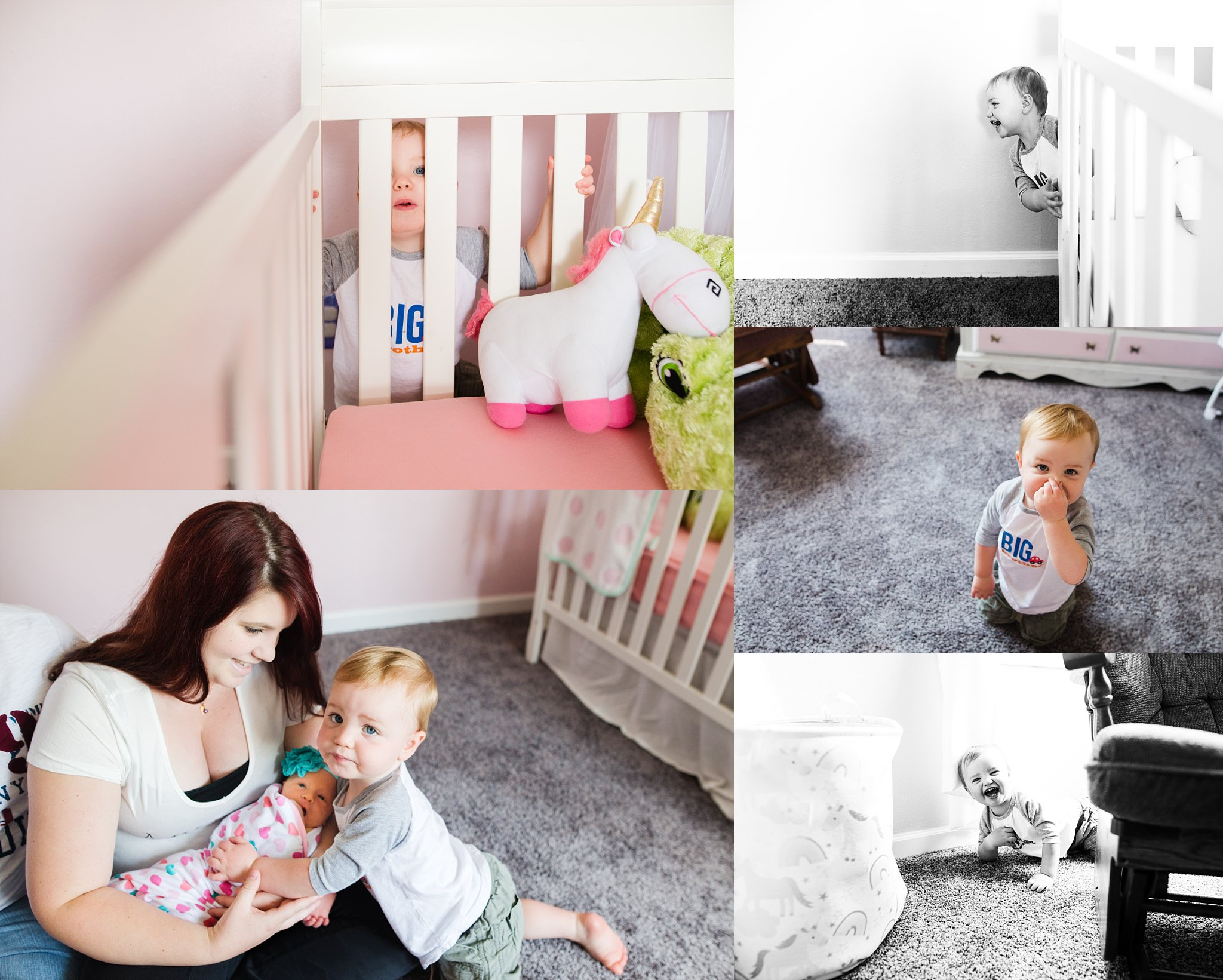 Aly Dawn Photography. Kentuckiana (Louisville & Southern Indiana) Newborn, Family, and Maternity Photographer.
