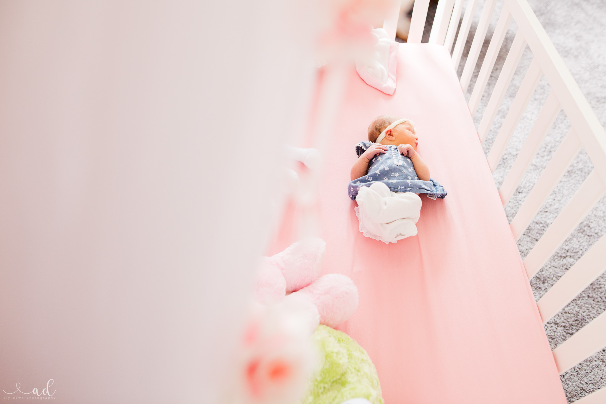 A Fairy Tale Newborn {Indiana Newborn Photographers}