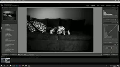 Watch Me Edit: Converting an Image to Black and White