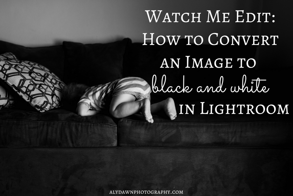 Watch Me Edit: How to Convert an Image to Black and White