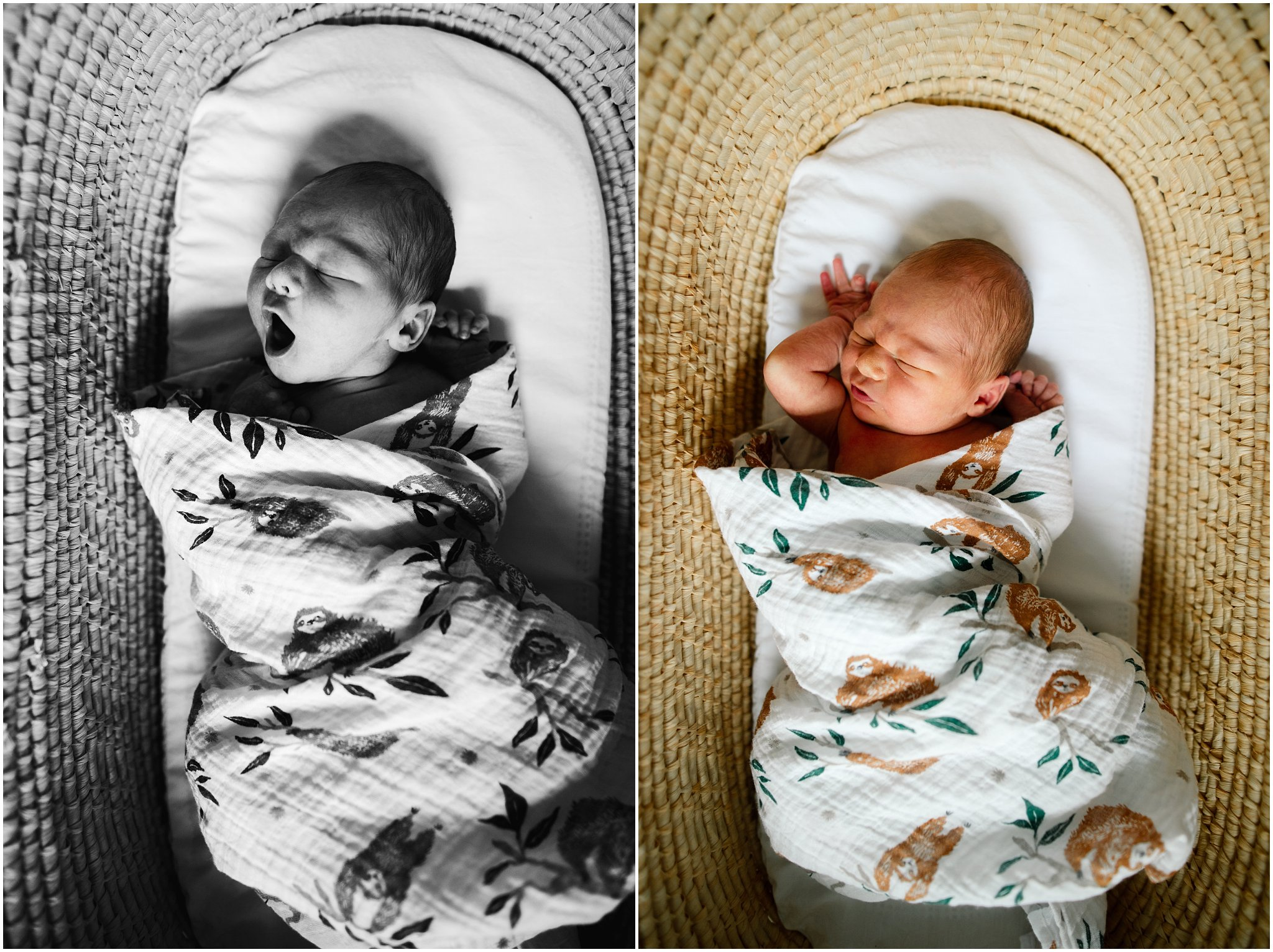 Kentuckiana Newborn Lifestyle Photographer