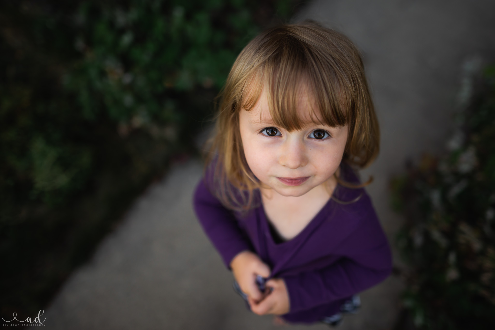 Aly Dawn Photography   How to Get Eye Contact From a Toddler